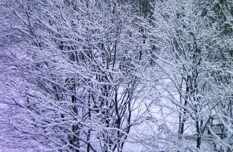 Fit für Sport im Winter?