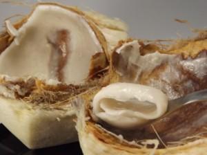 Fleisch der Kokos für natives Kokosöl