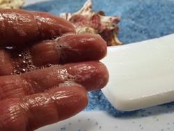 Schaumbildung der sanften Aloe Vera Seife