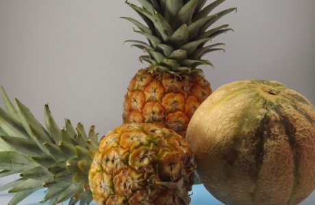 Vitamine und ausgewogene Ernährung mit Anti-Aging-Effekt