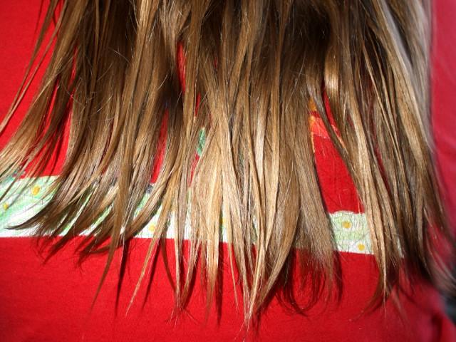 Haarspitzen kurz nach dem Einfetten